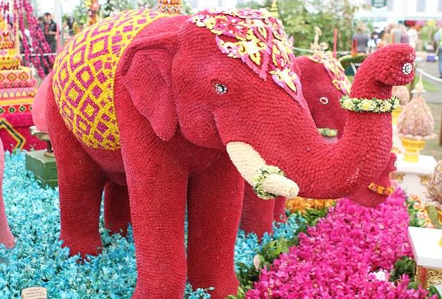 Pink elephant flowers 31 background wallpaper hdflowerwallpaper pink elephant flowers hd wallpaper mightylinksfo