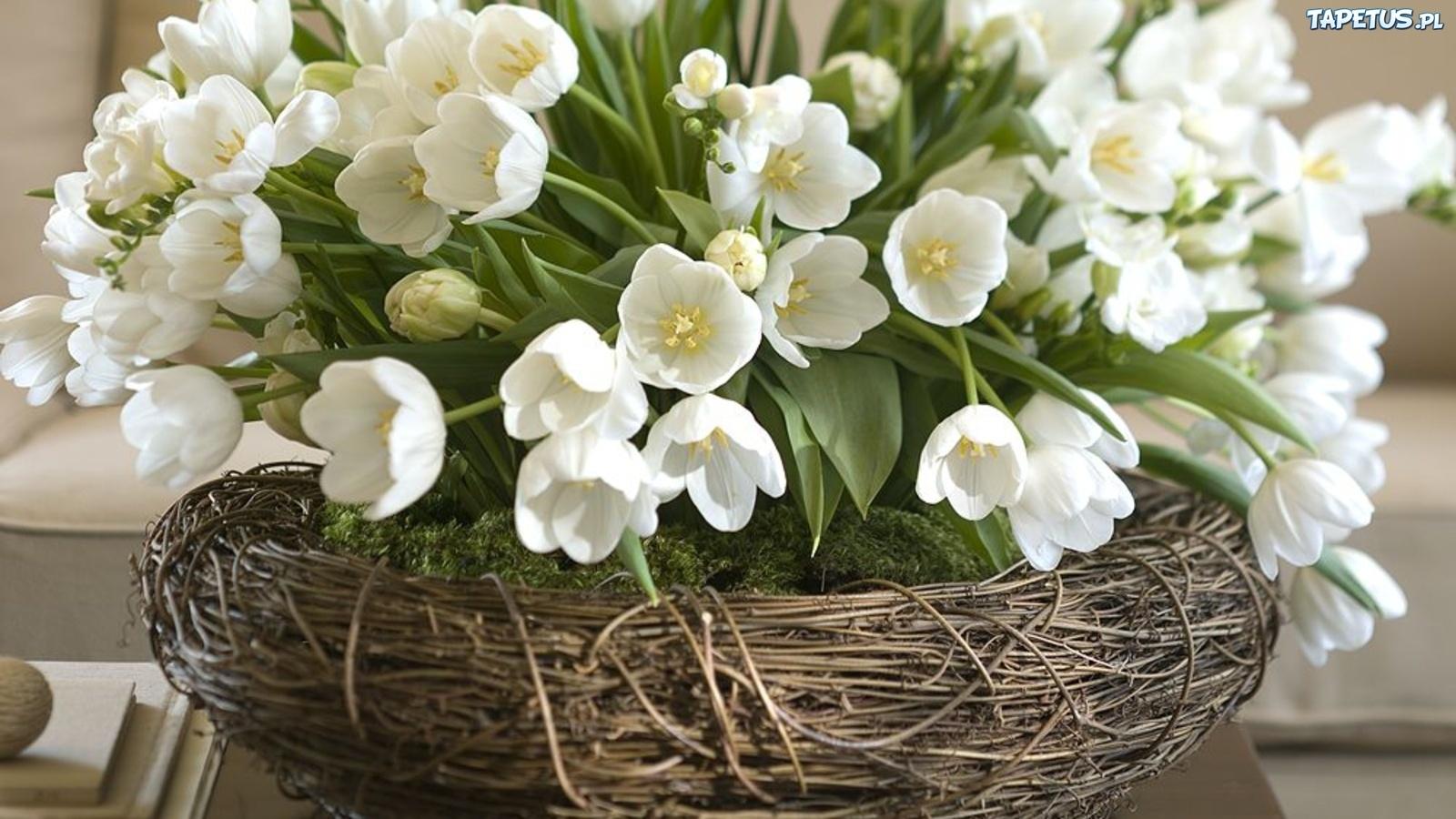 White flowers in basket 10 background wallpaper hdflowerwallpaper white flowers in basket free wallpaper mightylinksfo